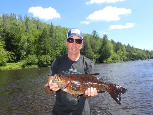 The brantwood lodge fly fishing for Trout fishing wisconsin